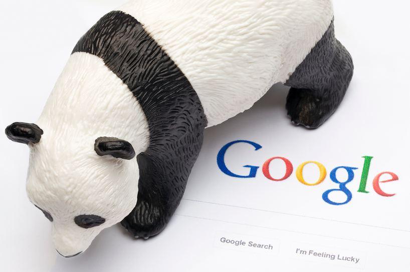 Google Panda para la mejora de contenidos