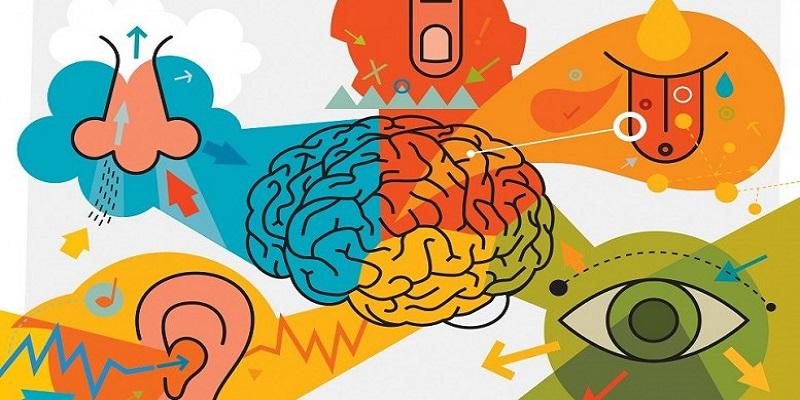 5 ejemplos de marketing sensorial para entenderlo mejor